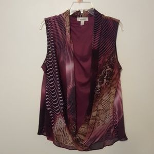 Dress Barn Purples, sheer overlay with lining 1X